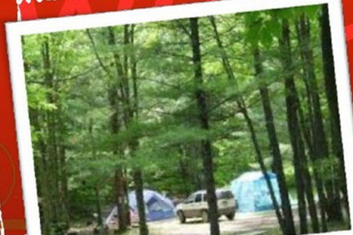 WCA Family Camp 2015